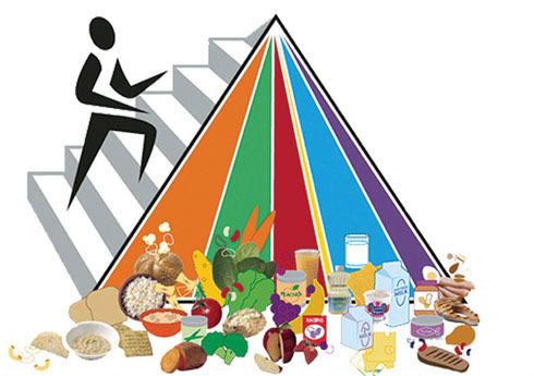 Pirámide alimenticia deportistas