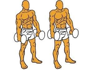 Encogimiento de hombros con mancuerna