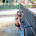 Obstáculo piscina de barro Iberian Race