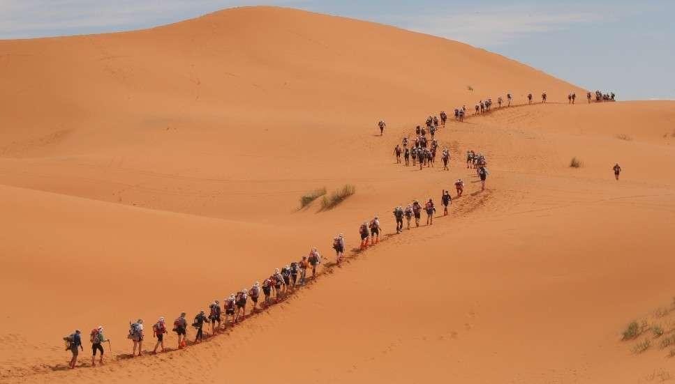 Desert Run