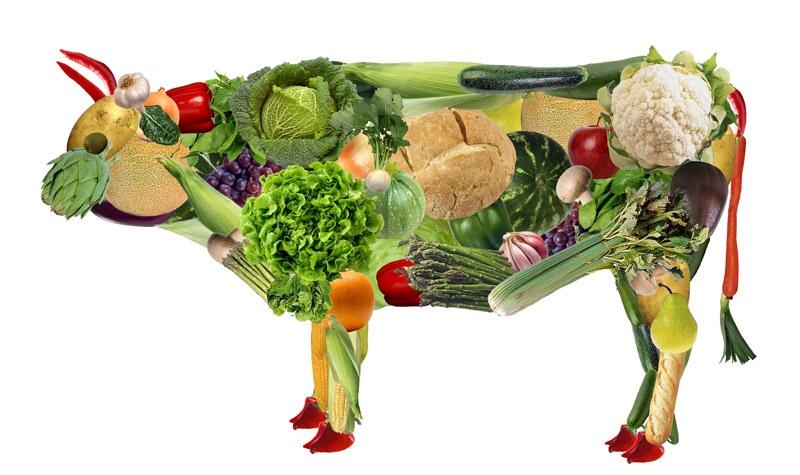 Vaca vegana