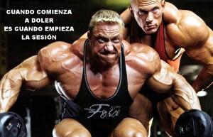 Motivación gym 12