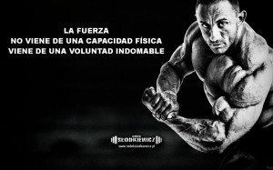Motivación gym 6