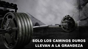 Motivación gym 7