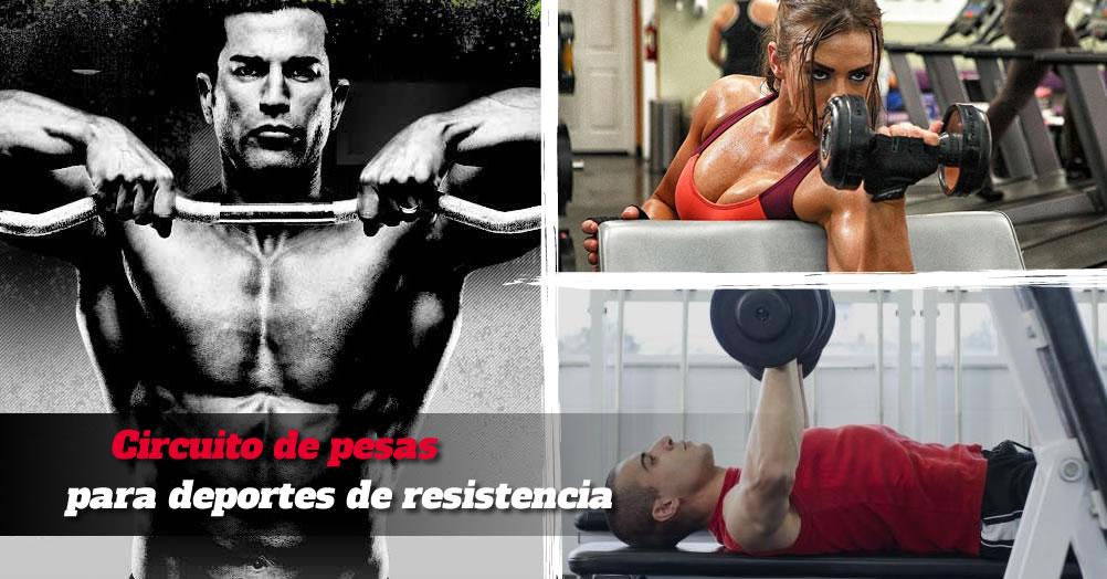 Circuito de pesas deportes resistencia