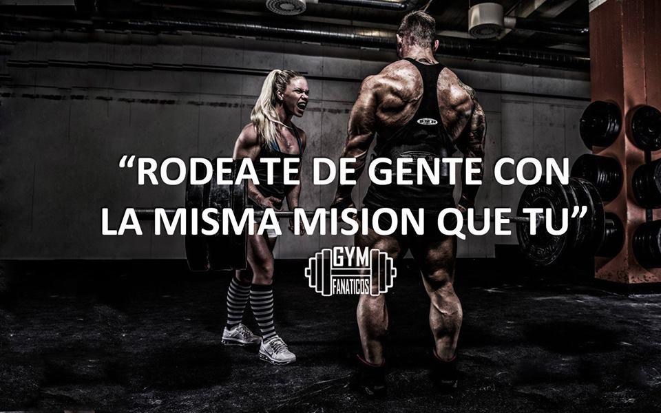 gym fa