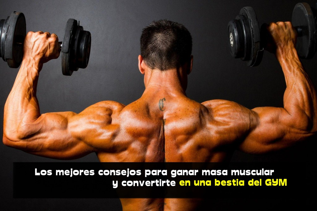 Los mejores consejos para ganar masa muscular y convertirte en una bestia del GYM