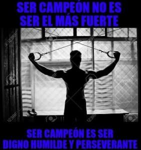 motivacion gym 12