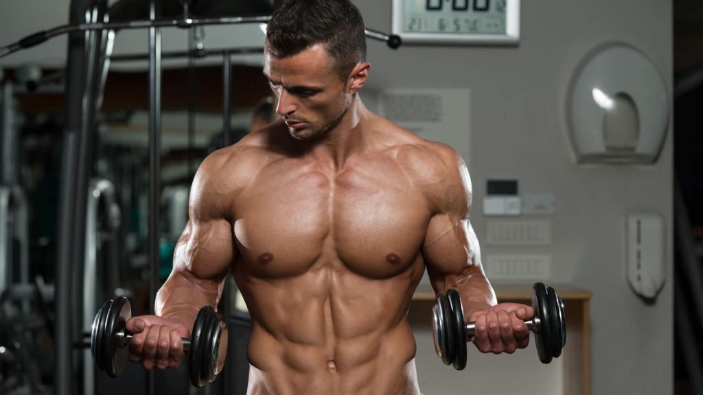 Biceps esculturales