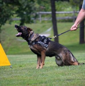 Superar pruebas físicas Policía Nacional