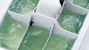cubos de aloe vera