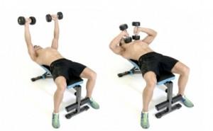 tate press tríceps