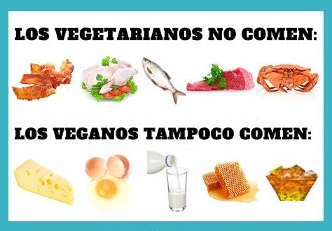 veganos no comen vegetarianos