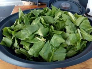 vegetales más nutritivos